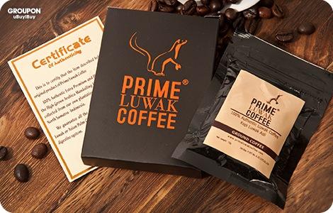Prime luwak coffee sachet
