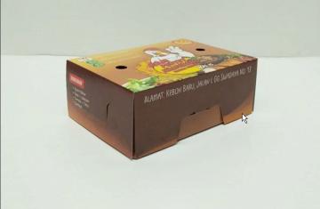 kemasan box makanan
