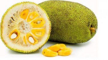 manfaat-buah-nangka