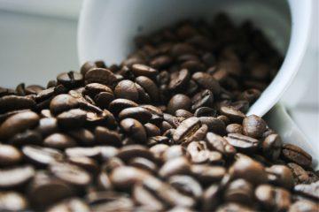 mengenal-jenis-kopi