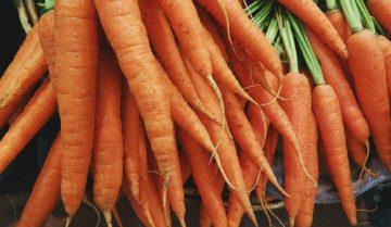 wortel-untuk-buat-keripik