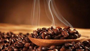 dibalik-nikmatnya-kopi-sidikalang-kopi-nusantara-terbaik-dunia