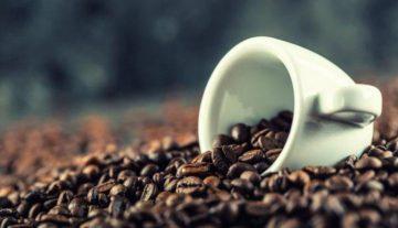 kenali-keunikan-dan-cita-rasa-kopi-bengkulu-yang-jarang-diketahui